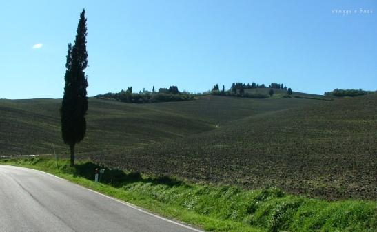 strada cipresso Toscana
